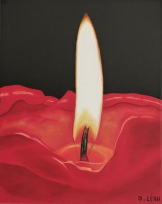 Coeur de flamme  - S.Léau